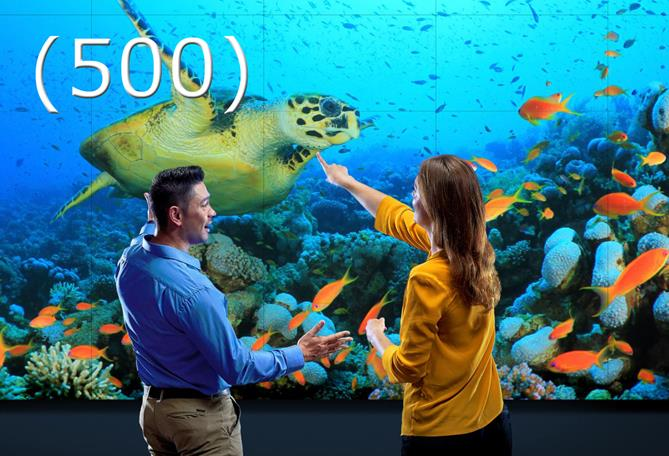 500 days of barco unisee
